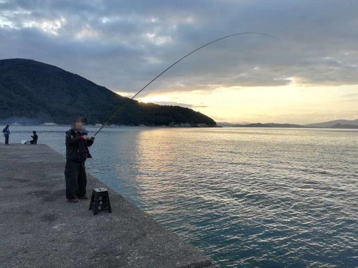 アオリイカが良く釣れる時間帯(タイミング)