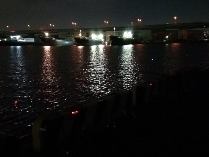 シーズン後半は湾奥の釣り場でも楽しめる