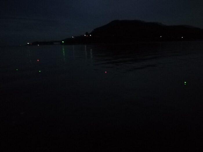 深夜の時間帯でも釣果が期待できるタチウオ