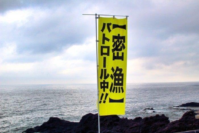 貝藻類を許可なく採るのはNG