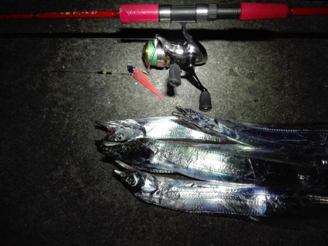 タチウオのワインド釣法