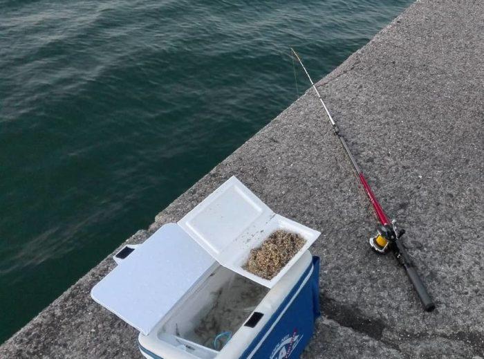 短竿で楽しむ探り釣りの一つ【際釣り】