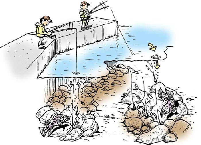 際釣りやちょい投げに代表される探り釣り