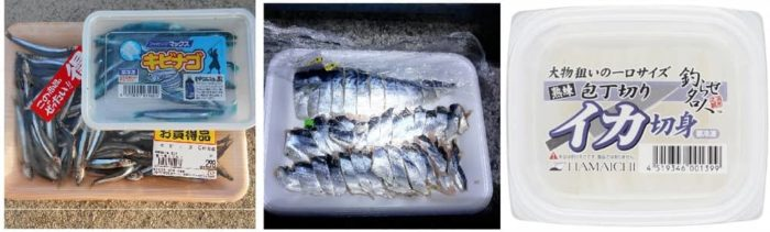 キビナゴ / サンマの切り身 / イカの切り身