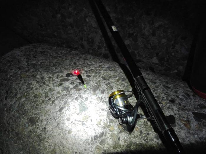 夜釣りには欠かせない電気ウキ